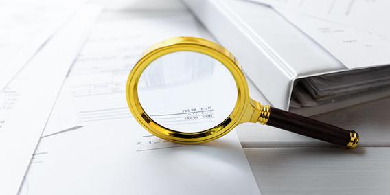 Los técnicos del fisco que se presentan en la empresa para controlar la doble contabilidad