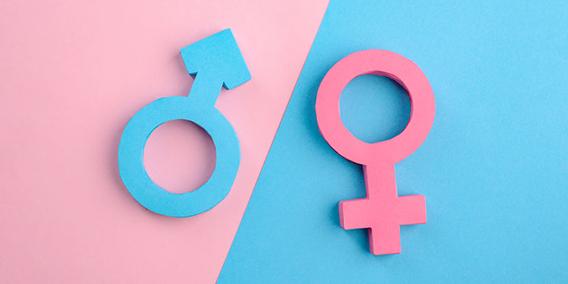 Igualdad de oportunidades en el empleo | Sala de prensa Grupo Asesor ADADE y E-Consulting Global Group